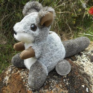 Brush-tailed Rock-wallaby - Soft Toy